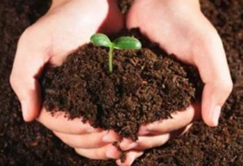 土壤调查评估及检测